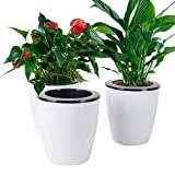 Vencer 3 Pack Self Watering Plante Flower Pot,Suitable for All...