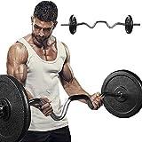 Barra de musculación Longitud 120 cm,Diámetro Ø25mm,Peso 11.5 Lbs,Barra de Entrenamiento para bíceps y tríceps,Barra Curl Z con 2 Collares spinlock