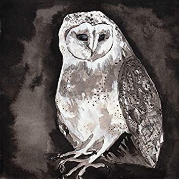 Owl Song