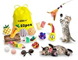oolilioo 22 PCS Cat Toys, Kitten Interactive Toys Assortments Including Feather Wand, Cat Cool Glasses, Bell Balls, Fluffy Mice, Catnip Toys, Natural Chew Stick for Cat, Kitty