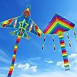 Yojoloin 2PCS Cerf-Volant,Grand Cerf-Volant Rainbow et Cerf-Volant d'avion pour Enfants Adultes,Cerf-Volant avec Longue Queue colorée et Aile Forte,Jeu de Plein Air Activités Printemps-été