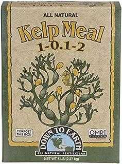 bulk kelp meal