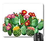 7AN.M Cactus Tropical Botany Garden Plants Print Mouse Pad, Green Cati Pink Red Flowers Painting Art Mouse Pads