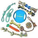 Focuspet Hundespielzeug Set, Haustier Hund Geflochten Seil Spielzeug Set Hund Spielzeug Interaktive Baumwolle Zähne Reinigung Für Kleine Bis Mittlere Hunde Kauspielzeug Packung mit 10 Stücke