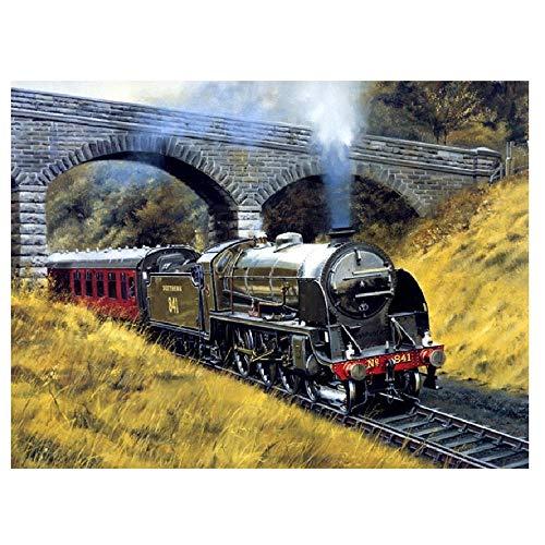 Malen Nach Zahlen Für Erwachsene Zug Unter Der Brücke Feiertagsgeschenke 50x65cm