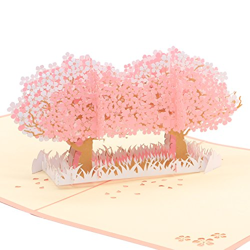 3D Pop Up Greeting Card - Showering in Japan's Rain of Cherry Blossom - Thank You Card for All Occasions Birthday Cards Invitation Cards Anniversary Cards (Cherry Blossom)