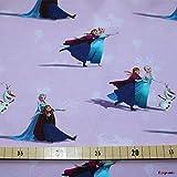 Loopomio Jersey Stoffe Frozen Anna und ELSA rosa 0,50m x VB