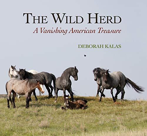 The Wild Herd: A Vanishing American Treasure