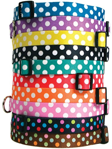 Polka Dot Dog Collar - with Tag-A-Long ID Tag System - Grape - Large 18 to 28 inch Length x 1 inch Wide