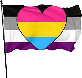MINIOZE Asexual Ace Panromantic Pan Heart Pride Flag Themed Welcome Party Outdoor Outside Decorations Ornament Picks Home House Garden Yard Decor 3 X 5 Ft Small Flag