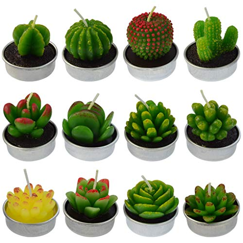 mifengda 12 PCS Cute Succulent Cactus Candles Smokeless Cactus Tealight Candles Delicate Decorative Candles for Valentine's Day Birthday House-Warming Party Wedding Spa Home Decoration Gifts