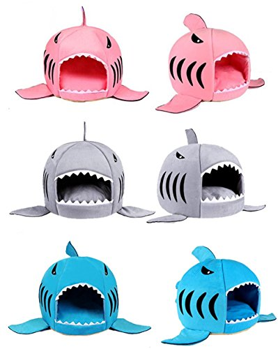 Hai Katzenhöhle