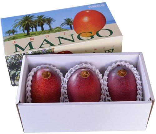 減農薬 有機肥料使用 宮崎産 太陽の子 マンゴー 中玉3玉 約1kg化粧箱入