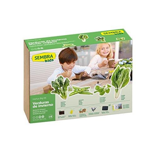 SEMBRA - juego educativo, Kit huerto Verduras de invierno