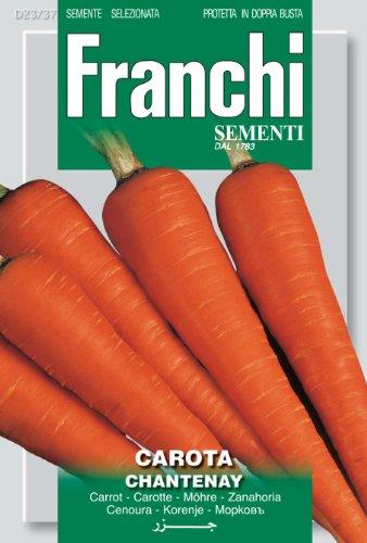 Seeds of Italy Ltd Franchi Carrot Chantenay