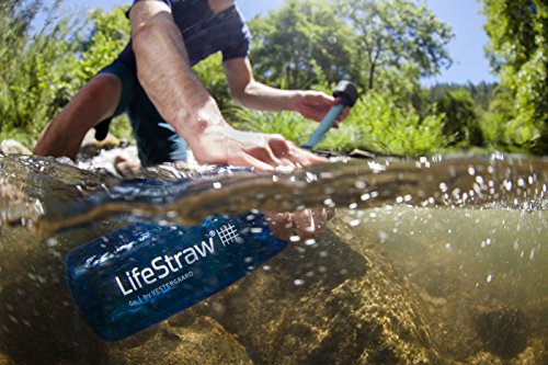 LifeStraw Go Water Filter Bottle with 2-Stage Integrated Filter Straw for Hiking, Backpacking, and Travel, Blue (LSGOV2CR45)