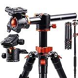 K&F Concept TM2515T1 Professional 67 inch Camera Tripod and Metal...