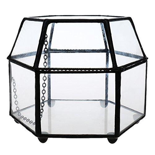 FLAMEER Mini Glas Terrarium Geometrische Tischdeko Box Sukkulent Pflanze Pflanzer Weihnachtsgeschnek - durchsichtig, 125*115*95MM