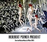 Live Im Konzerthaus In Wien 2013 - Herbert Pixner Projekt