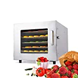 Stainless Steel Food Dehydrator Machine Food Dryer Dehydrator for Jerky, Fruits, Vegetables,...