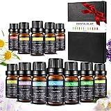 Aceites Esenciales, 12 x 10 ml Set de Regalo de Aceites de Aromaterapia 100% Natural Puro Aceites Esenciales Para Aromaterapia Set de Regalo para Humidificador y Difusor Aroma Ayuda a Dormir