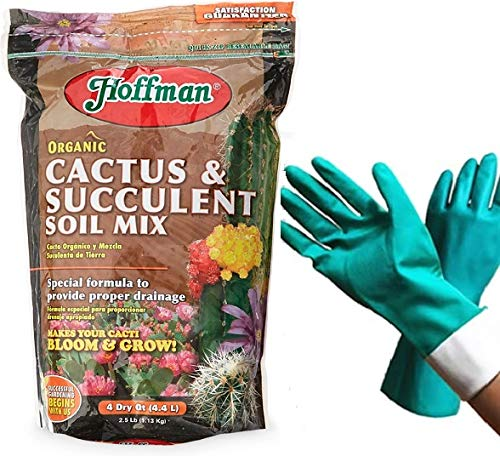 Hoffman 10404 Organic Cactus and Succulent Soil Mixed Potting Soil for Outdoor and Indoor Plants, Tropical Perennial Cactus Aloe Soil, 4 Quarts [Bundled with Pearson's Garden Gloves] (1)