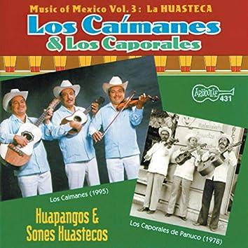 Music of Mexico, Vol. 3: La Huasteca: Huapangos Y Sones Huastecos