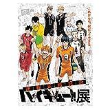 gerFogoo ZhuHaoKeJi Beliebte Anime Haikyuu !! Charaktere