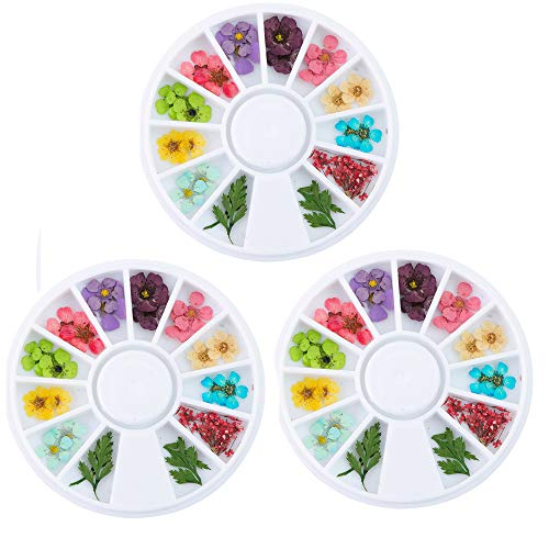 Polytree 3pcs Fashion Dried Flower Nail Art Sticker DIY Tips Decoration Wheel
