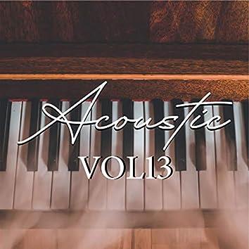 Acoustic, Vol.13