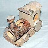 Pinokio Nager-Spielzeug aus Holz Lokomotive für Mäuse 150x80x110 mm Schlupflöcher 33 mm