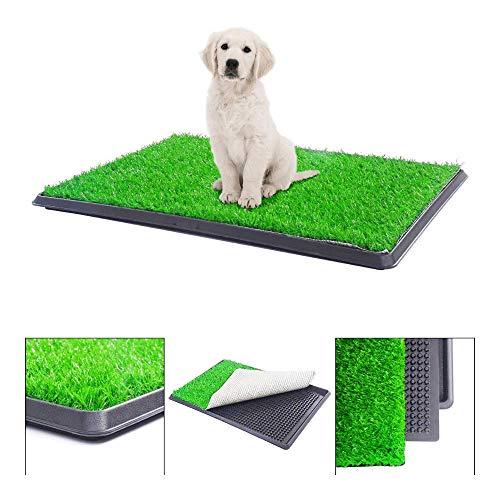 BringerPet 30'x20' Puppy Pet Potty Training Pee Indoor Toilet Dog Grass Pad Mat Turf Patch