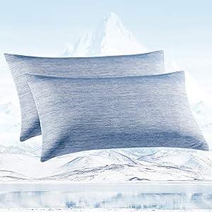 Avoalre Fundas Almohada Frescas con Fibra de Enfriamiento Japonesa ARC-Chill, Q-MAX 0.4, Ambos Lados Súper Suave Transpirable Cremallera Oculta, Antiestática Belleza Cabello 2 Pack, 40*80CM, Azul