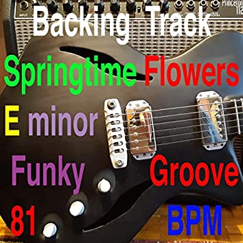 Backing Track Springtime Flowers E minor
