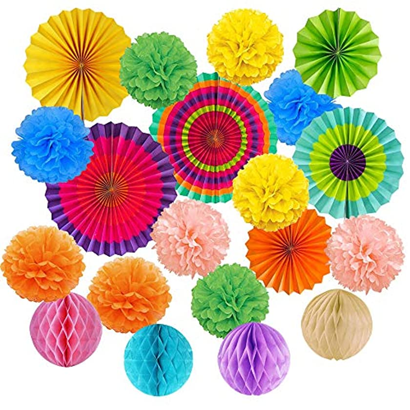 Kbnian Hanging Paper Fans Set with Colorful 10 Tissue Paper Pom Poms, 6 Flower Fans and 4 Honeycomb Balls Party Birthday Wedding Christmas Decoration Supplies-20Pack