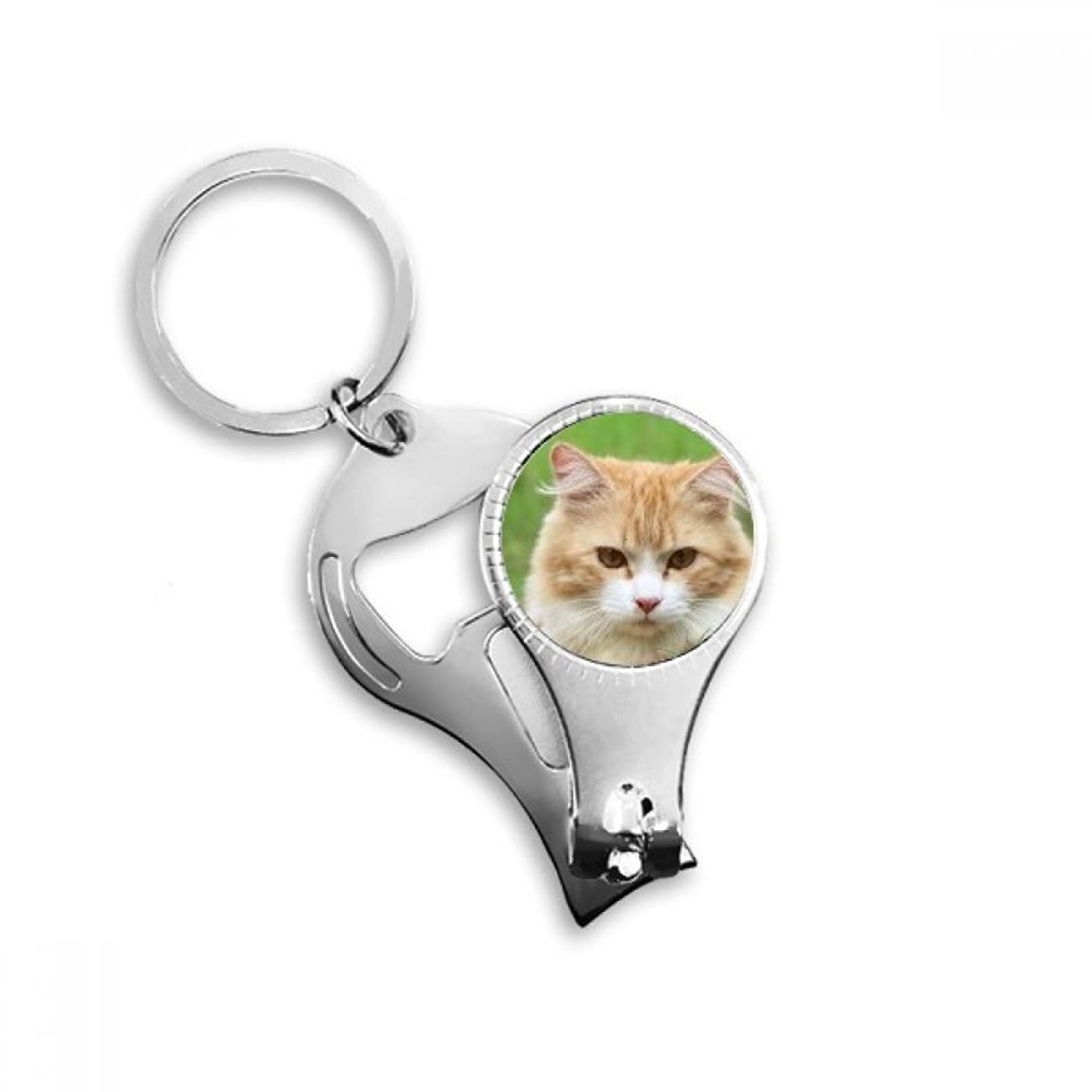 有名差別的ヶ月目PINGFUFF HOME イエローストライプ猫凝視ペット動物メタルキーホルダーリング多機能ネイルクリッパー栓抜き車のキーホルダー最高のチャームギフト