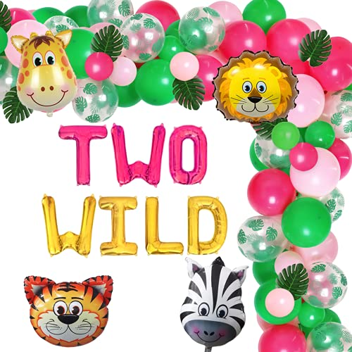 Two Wild Safari Birthday Party Decorations