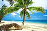 Bilderdepot24 Fototapete selbstklebend Strand im Paradies - 180x120 cm