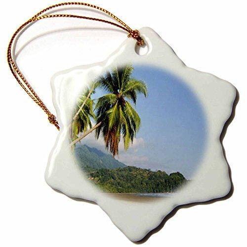 cwb2jcwb2jcwb2j 3-Inch Porcelain Snowflake Decorative Hanging Ornament, Costa Rica