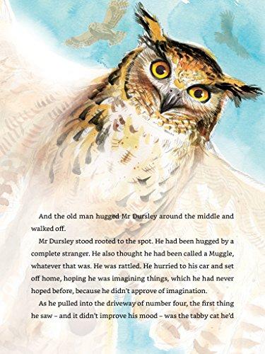 Imagem do shoveler em miniatura - 5 para Harry Potter and the Philosopher's Stone: Illustrated [Kindle in Motion] (Illustrated Harry Potter Book 1) (English Edition)