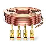 PureLink SP060-010 Cable de altavoz 2 x 2.5 mm² (99.9% OFC alambre de cobre sólido 0.20mm) Cable de altavoz de alta fidelidad, 10m, transparente, Set incluye 4 tapones de banana