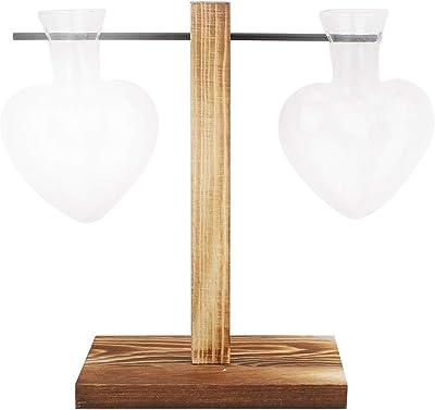 Decoración fácil del florero de Madera de Cristal, florero hidropónico Respirable, Transparente para la Oficina en casa