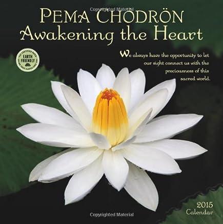 Pema Chödrön 2015 Calendar: Awakening the Heart