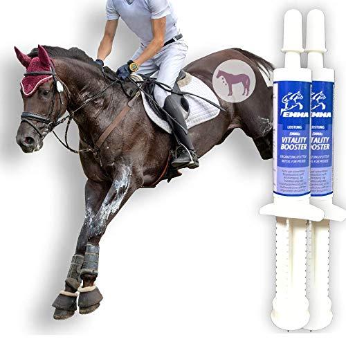 Aminosäuren Paste für Pferde I Amino Booster I Vitamin E Bierhefe I Energy Booster I Aufbaufutter Muskelkater I Regeneration der Muskulatur Leistung I Muskelaufbau I Salze Magnesium Pferd 2 * 30 ml