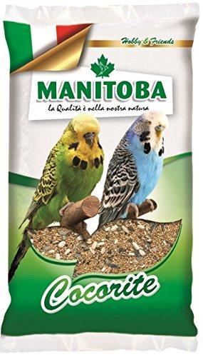 Manitoba Cocorite Biscuit 1 kg Hirse Leinen Hanf Panik Keks