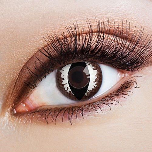 aricona Kontaktlinsen - Braun-weiße Kontaktlinsen Motivlinsen Katzenaugen - farbige Kontaktlinsen ohne Stärke für Karneval, Fasching, und Kostüm-Partys, 2 Stück