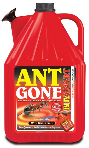 Buysmart Producto antihormigas de la Marca Listo para Usar, con su Propio Recipiente, 5 litros