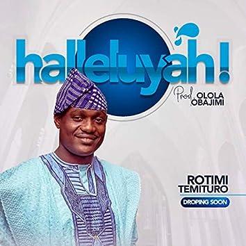 Hallelujah (feat. Inumidun)