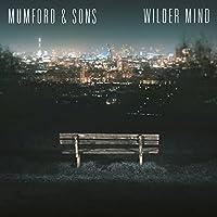 Wilder Mind [12 inch Analog]