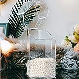 COSDDI - Soporte para brochas de maquillaje, acrílico, organizador de maquillaje, caja de almacenamiento a prueba de polvo, con perla blanca (plástico)